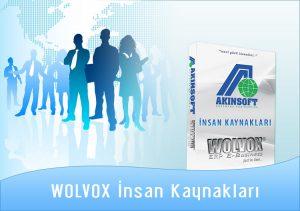 wolvox-insankaynaklari